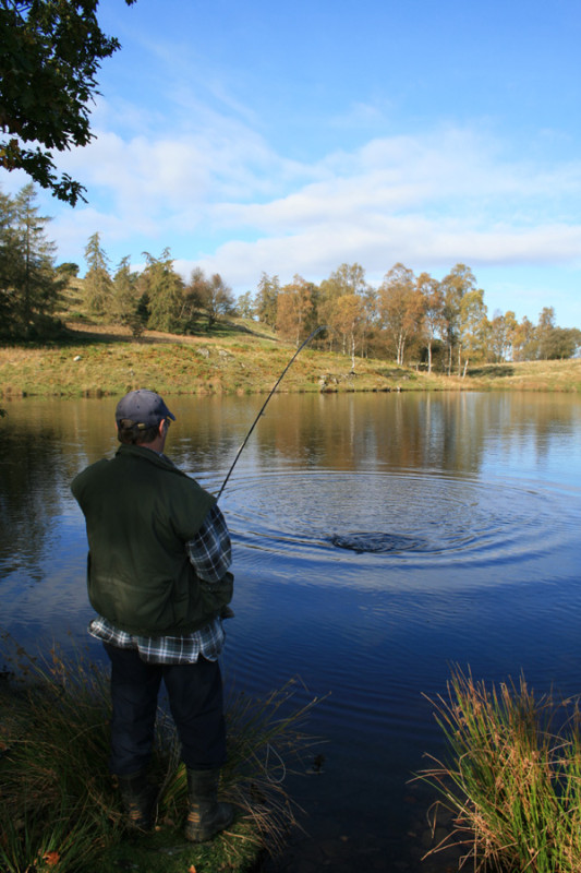 ghyll head, lake district fishing