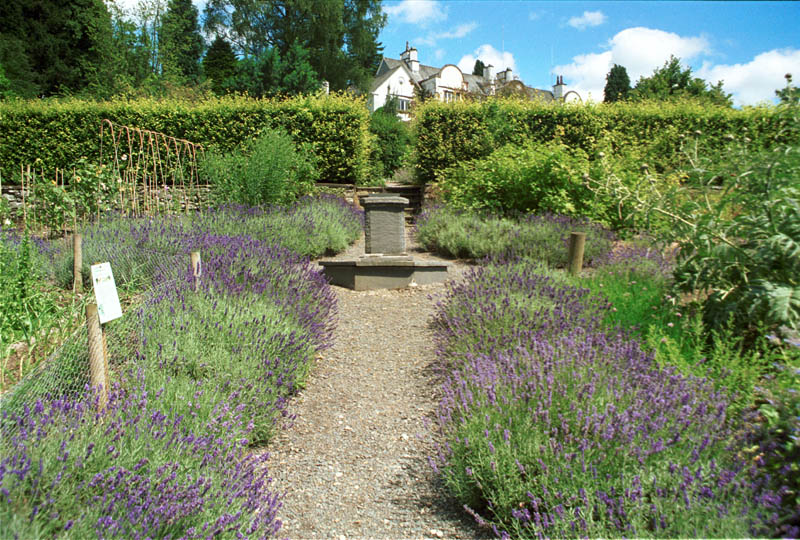 The beautiful gardens of Brockhole, now a visitor centre where various events are held throughout the year. Photo courtesy of www.visitcumbria.com/amb/brockhole.htm.