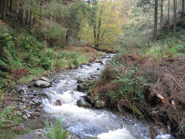 aiken beck, spout force, whinlatter forest, lake district