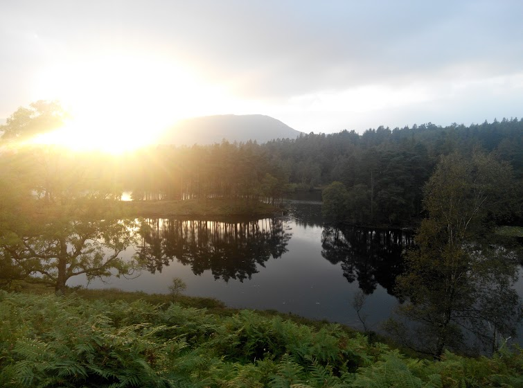 A recent walk at Tarn Hows concluded at sunset.