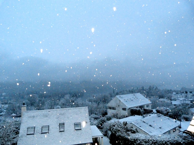 Snowflakes are caught glistening in the camera's eye as afternoon wanes in Bowness-on-Windermere. This photo was taken from Blenheim Lodge B&B Guest House in Bowness.