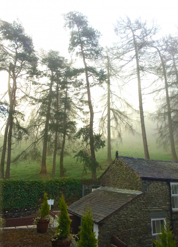 View of Brantfell, into which Blenheim Lodge nestles, from the first floor landing of our B&B this morning.