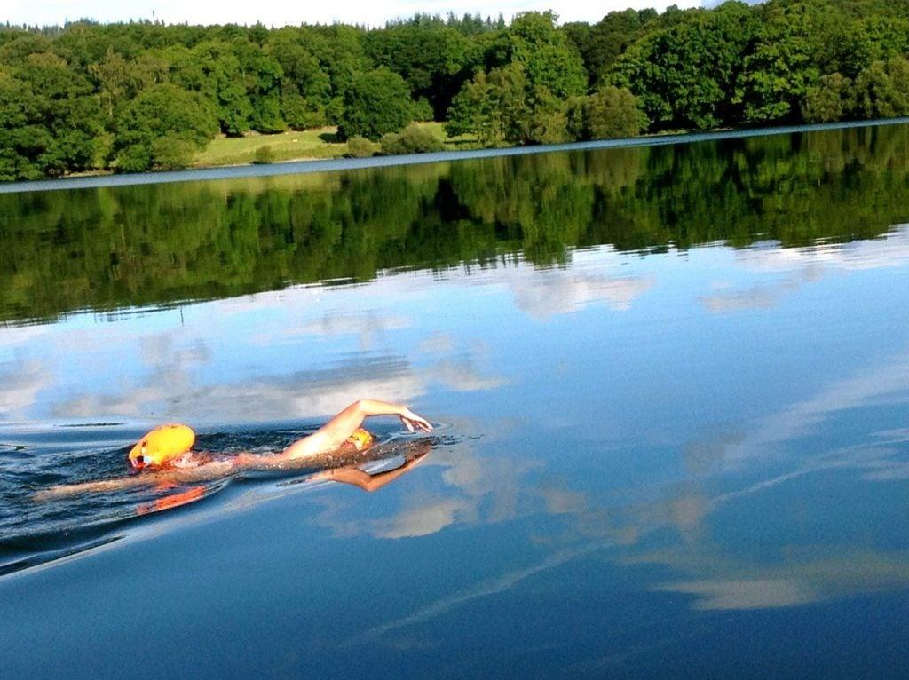 Swim & Stay