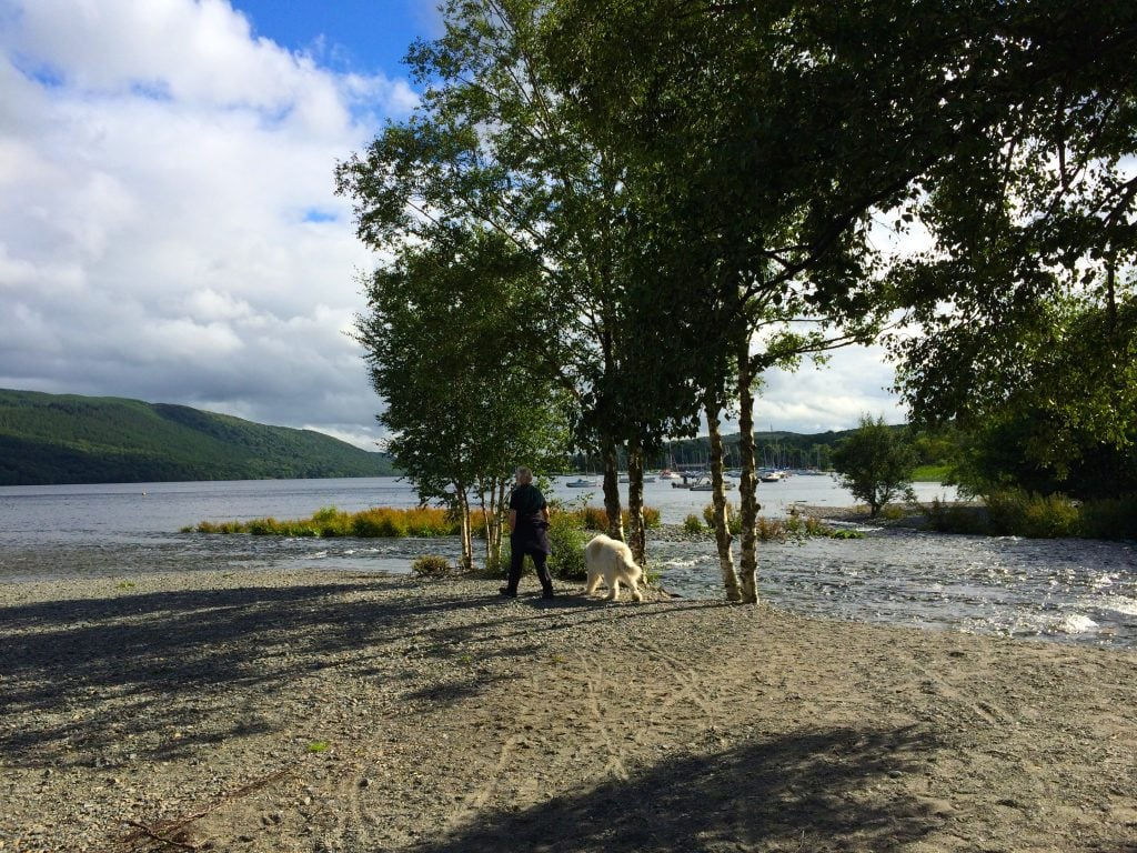 A lovely walk at Coniston Water in the afternoon of 11th July 2016.