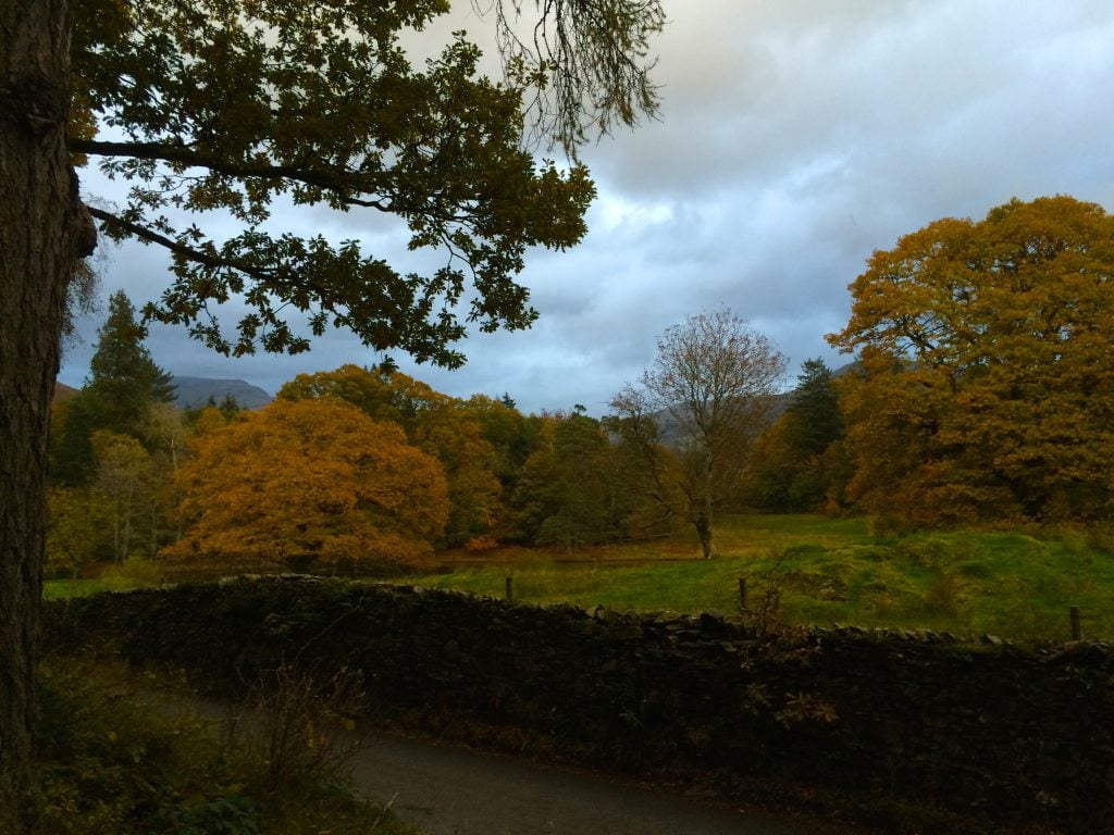 Part of the gravelled path from the River Brathay to Ferry House where one can catch the Bowness Ferry.