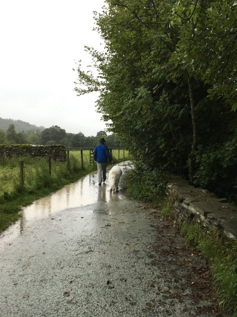 Walkies in the rain with our dog. Wet, but fun!