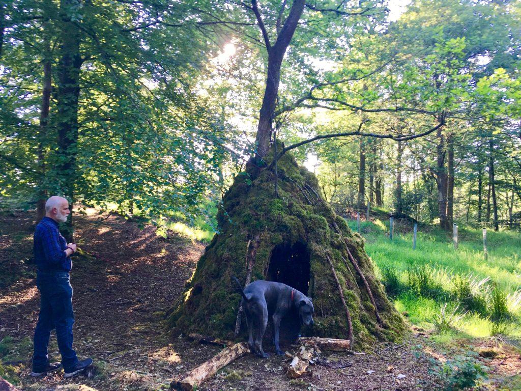 Dog and man examining a tree house